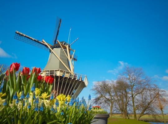 Riviercruise Rembrandt Tulpen en Molens