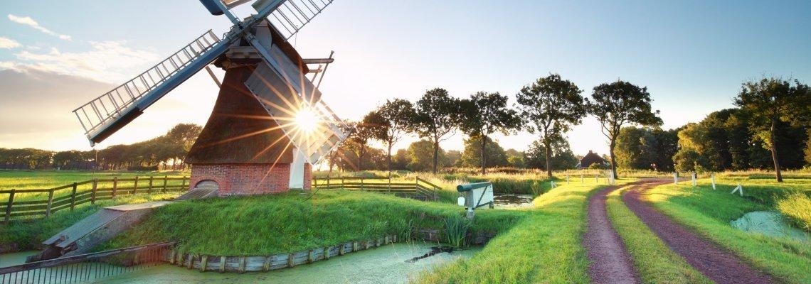Nederland - Molen - Landschap